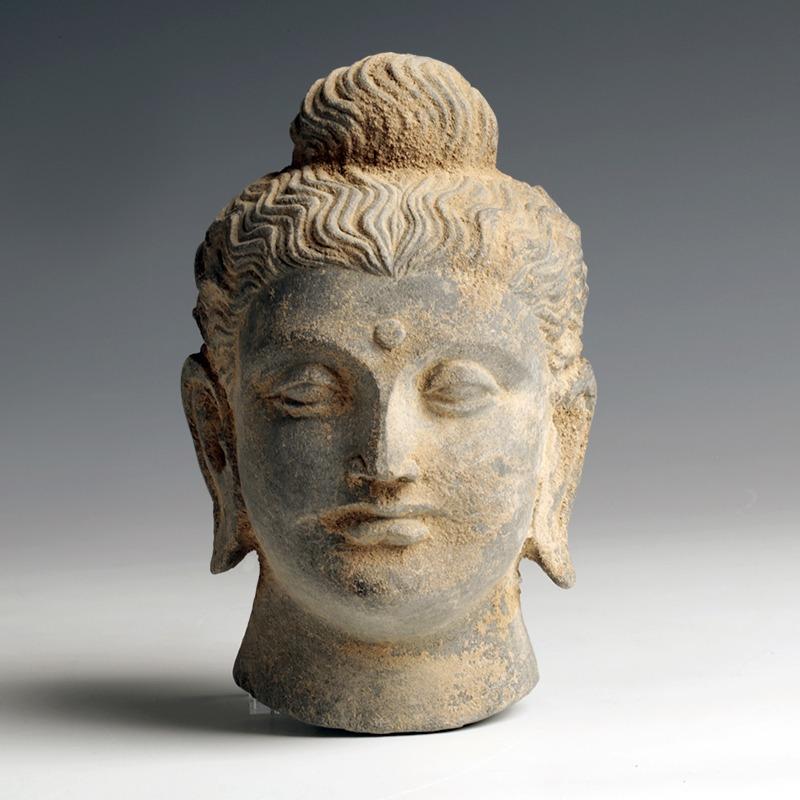 Gandhara Stone Head of Buddha
